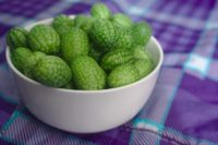 guide to grow cucamelons indoors