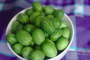 fresh picked cucamelons that have been grown inside
