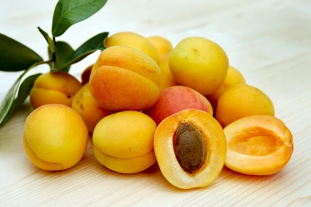 apricots grown indoors