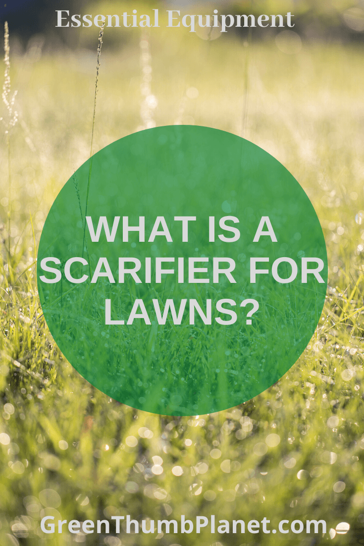 What is a scarifier for lawns?