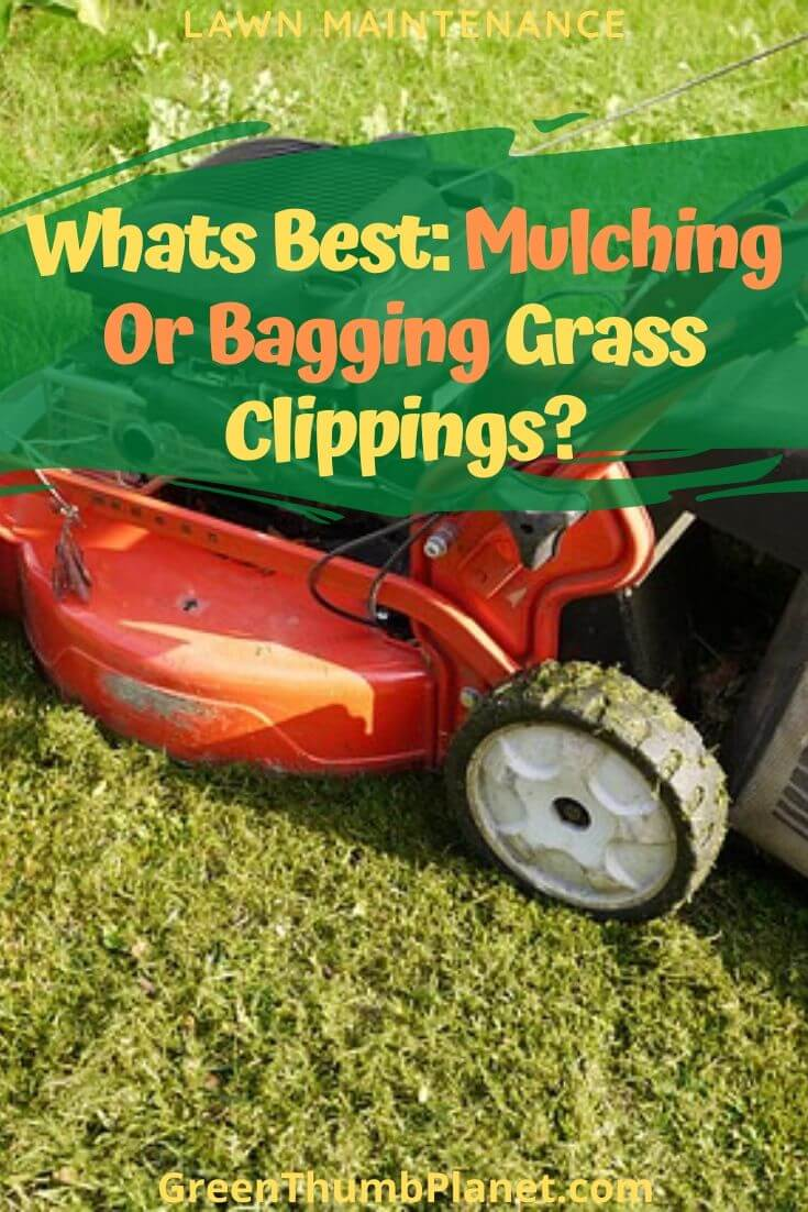 Is Mulching Or Bagging Best For Grass?
