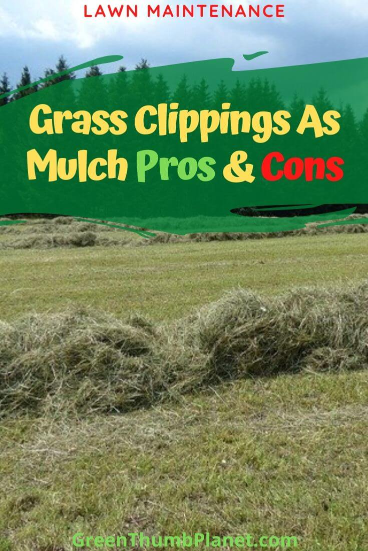grass clippings mulch pros and cons