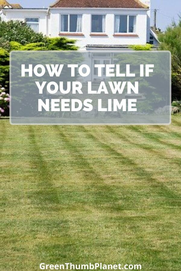 How To Tell If Your Lawn Needs Lime?