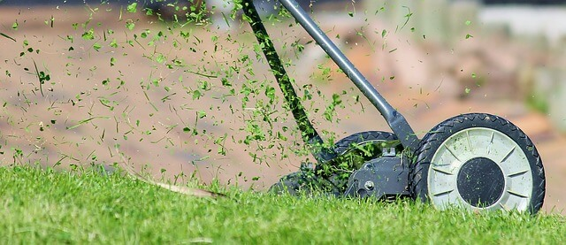 Is Mulching Or Bagging Better For Grass
