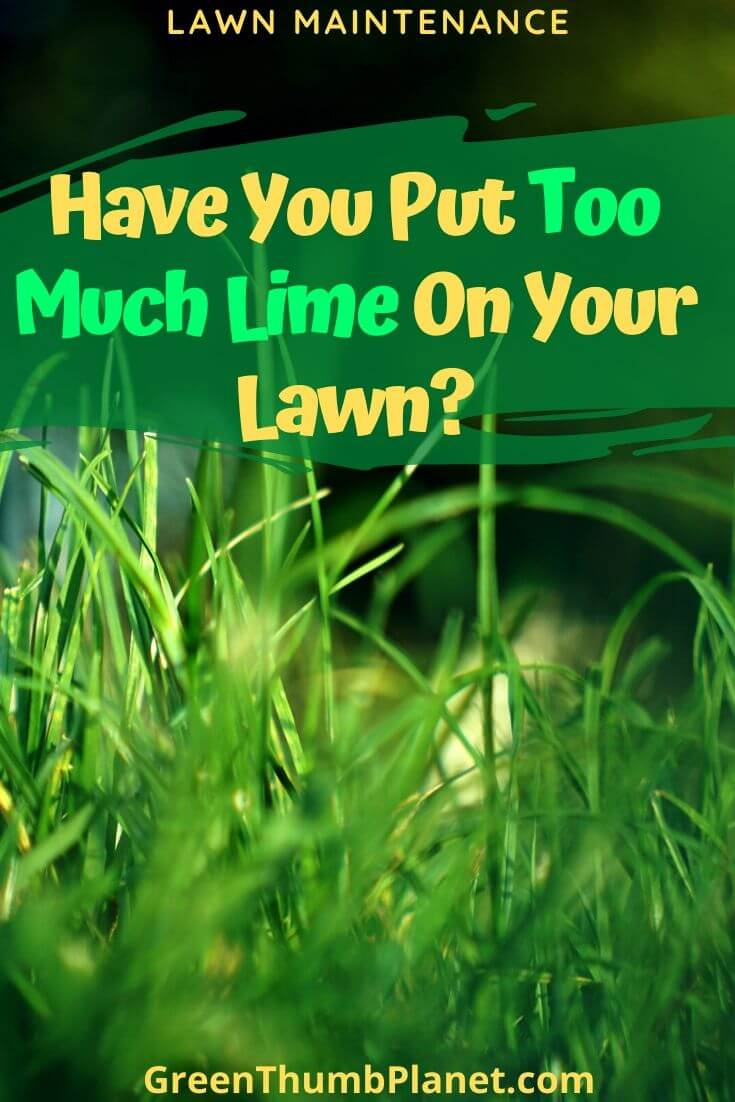 Have You Put Too Much Lime On Your Lawn?
