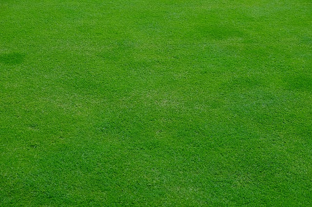 tips to leveling a lawn already laid