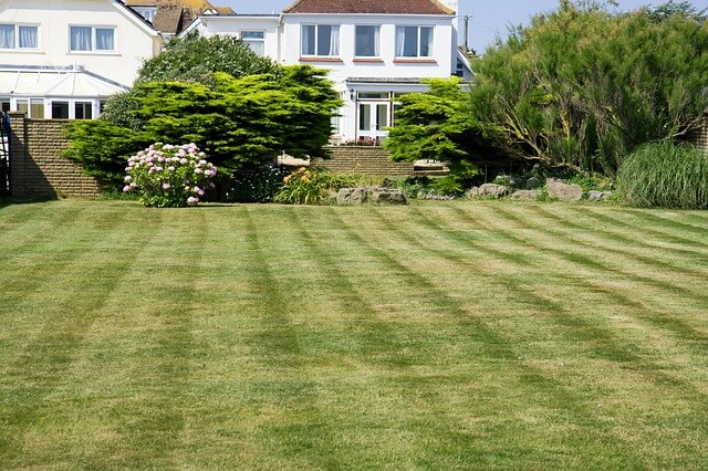 mow stripes with a push mower