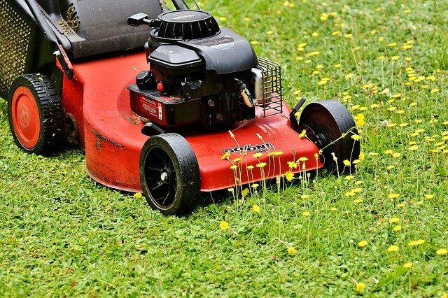 mowing warm season grass