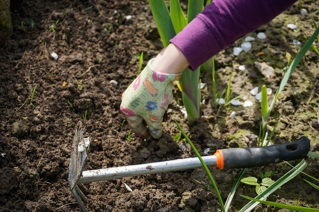 mixing grass clippings into your soil