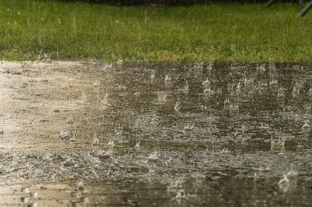 how dry before you mow your lawn