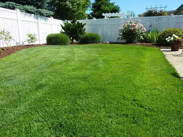 techniques for lawn mowing yard