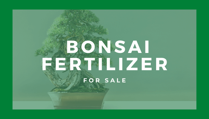 bonsai fertilizer products for sale